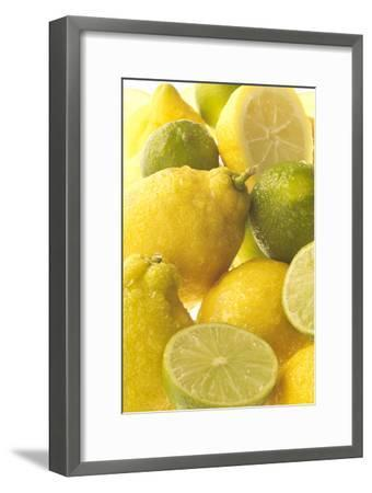 Lemons and Limes Close-Up--Framed Photographic Print