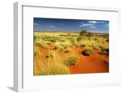Little Sandy Desert Western Australia--Framed Photographic Print