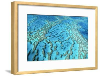 Australia Great Barrier Reef Hardy Reef--Framed Photographic Print