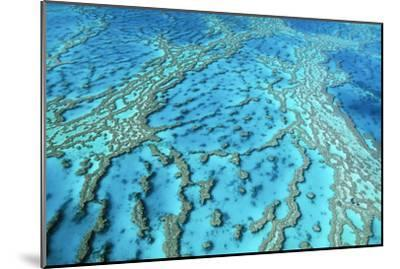 Australia Great Barrier Reef Hardy Reef--Mounted Photographic Print