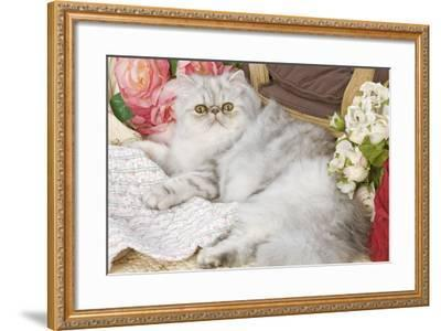 Persian--Framed Photographic Print