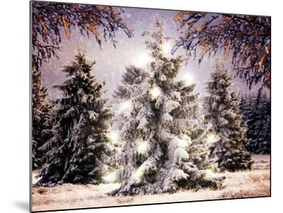 Snow Conifers in Winter Landscape with Christmas Lights--Mounted Photographic Print