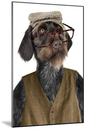 German Wire-Haired Pointer with Hat Glasses--Mounted Photographic Print