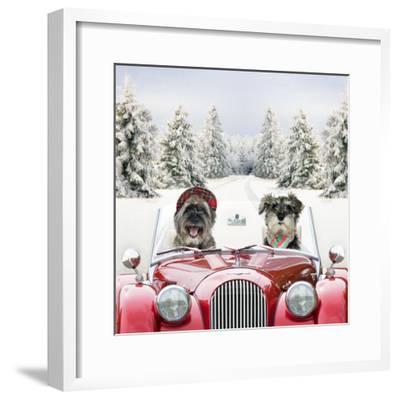 Driving Car Through a Snow Scene--Framed Photographic Print