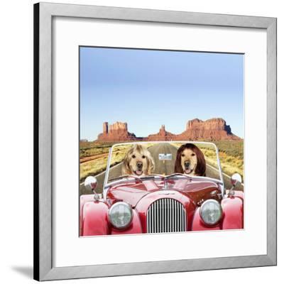 Golden Retrievers Driving Car Through Desert Scene--Framed Photographic Print