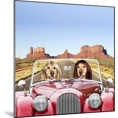Golden Retrievers Driving Car Through Desert Scene--Mounted Photographic Print