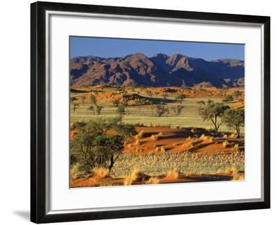 Namib Rand View over Red Dunes and Savanna--Framed Photographic Print