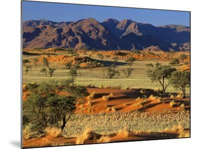 Namib Rand View over Red Dunes and Savanna--Mounted Photographic Print