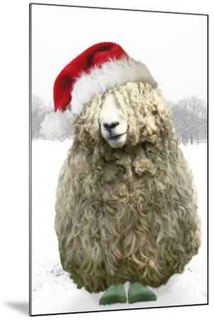 Longwool Sheep Wellington Boots Wearing Christmas Hat--Mounted Photographic Print