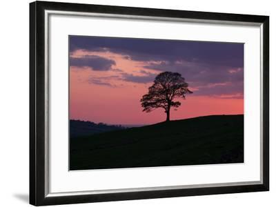 Another Day Passing-Doug Chinnery-Framed Photographic Print