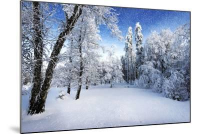 Days to Come-Philippe Sainte-Laudy-Mounted Photographic Print