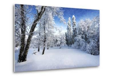 Days to Come-Philippe Sainte-Laudy-Metal Print