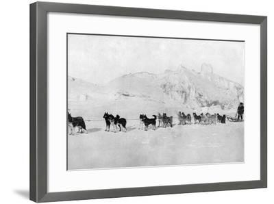 Huskies--Framed Photographic Print