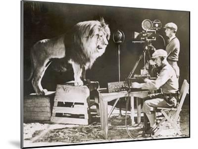 Mgm Lion--Mounted Photographic Print