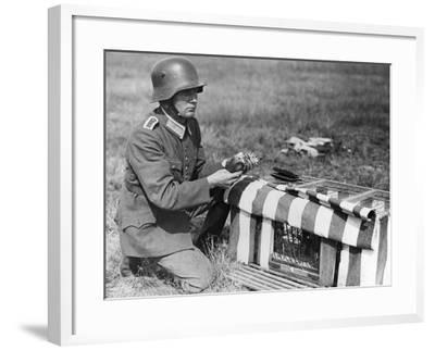 Pigeon Post--Framed Photographic Print