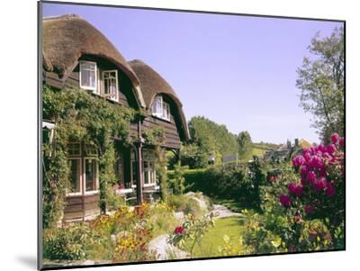Fishermen's Cottages--Mounted Photographic Print