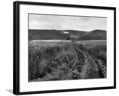 Pewsey White Horse-Fred Musto-Framed Photographic Print