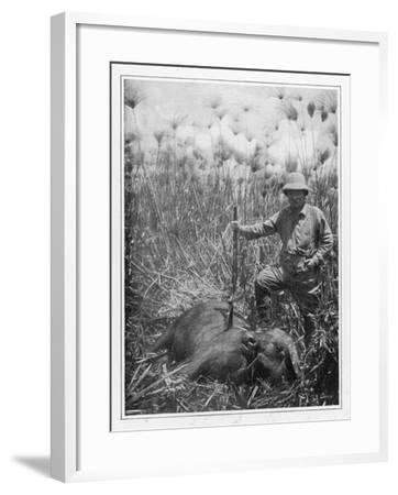 Theodore Roosevelt 26th American President with a Dead Buffalo--Framed Photographic Print