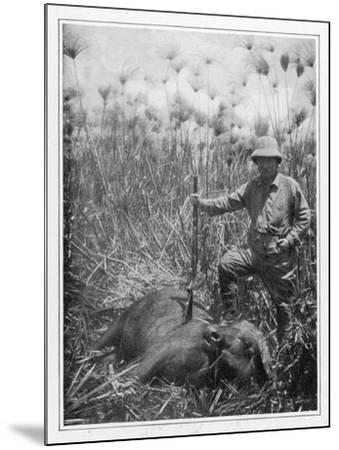 Theodore Roosevelt 26th American President with a Dead Buffalo--Mounted Photographic Print