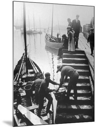 The Day's Catch is Unloaded from a Fishing Boat at Staithes Yorkshire-Graystone Bird-Mounted Photographic Print