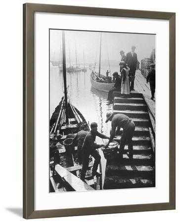 The Day's Catch is Unloaded from a Fishing Boat at Staithes Yorkshire-Graystone Bird-Framed Photographic Print