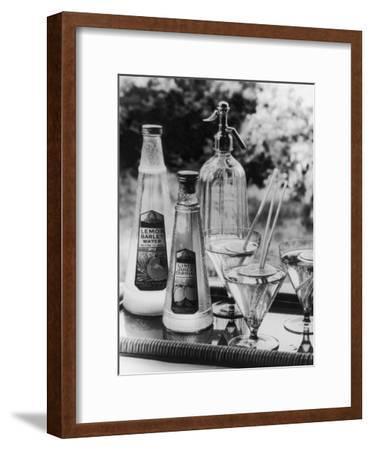 Summer Fruit Drinks--Framed Photographic Print