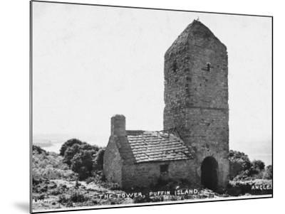 The Tower, Puffin Island, Anglesey--Mounted Photographic Print