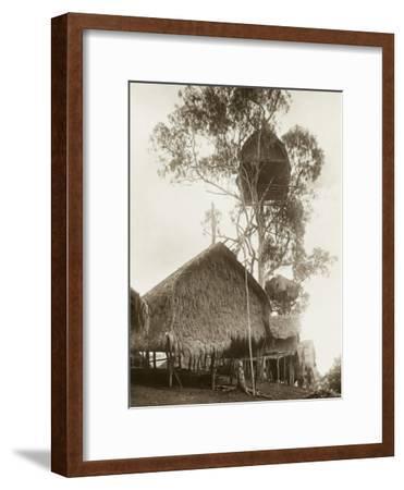 A Fantastic Treehouse at Ekiti Village, Sogeri, Papua New Guinea--Framed Photographic Print