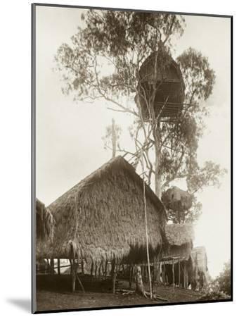 A Fantastic Treehouse at Ekiti Village, Sogeri, Papua New Guinea--Mounted Photographic Print