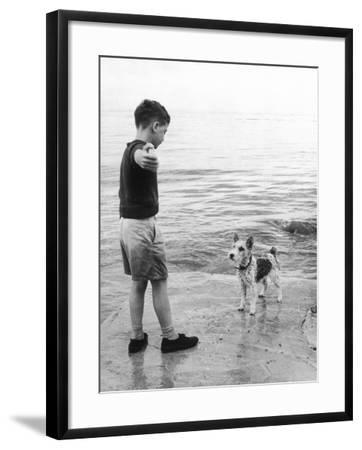 A Boy Throws Stones into the Sea for His Dog to Retrieve: the Dog Looks Up Expectantly-Henry Grant-Framed Photographic Print