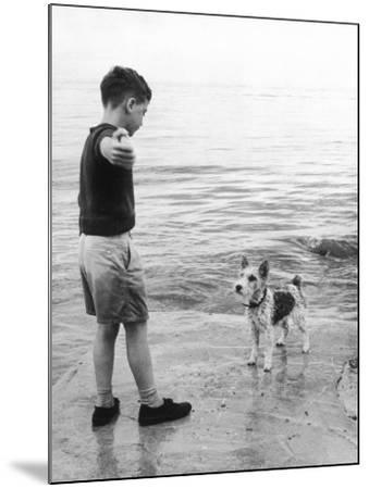 A Boy Throws Stones into the Sea for His Dog to Retrieve: the Dog Looks Up Expectantly-Henry Grant-Mounted Photographic Print