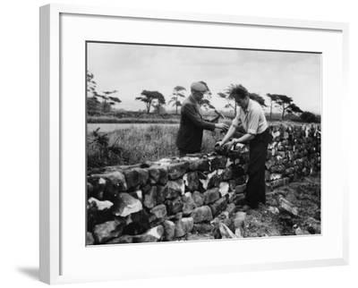 Dry Stone Walling--Framed Photographic Print
