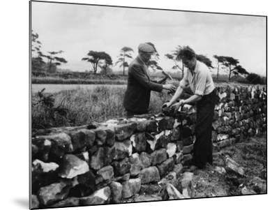 Dry Stone Walling--Mounted Photographic Print