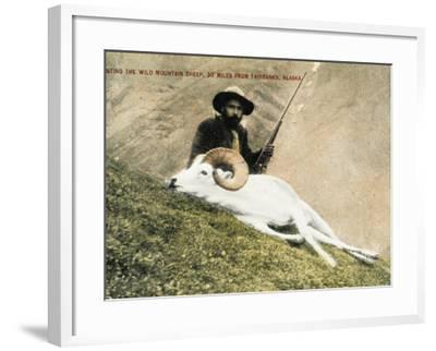 Hunting Wild Big Horn Sheep in Alaska--Framed Photographic Print
