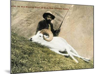 Hunting Wild Big Horn Sheep in Alaska--Mounted Photographic Print