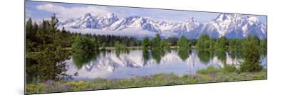 Usa, Wyoming, Grand Teton National Park-Jeff Foott-Mounted Photographic Print