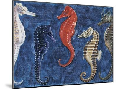 Close-Up of Five Seahorses Side by Side (Hippocampus Guttulatus)--Mounted Photographic Print