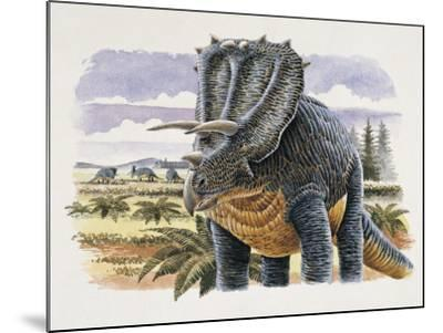 Four Dinosaurs in Landscape--Mounted Photographic Print