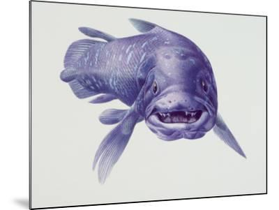 Close-Up of a Coelacanth--Mounted Photographic Print
