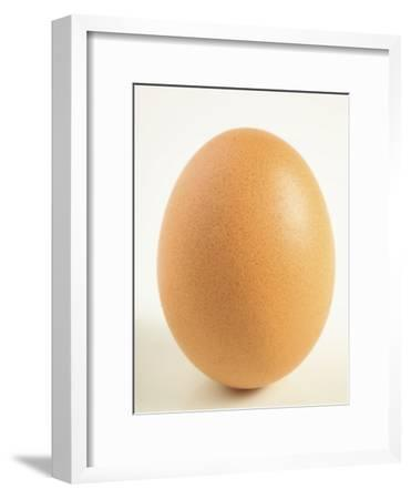 Close-Up of a Brown Egg--Framed Photographic Print