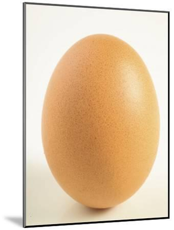 Close-Up of a Brown Egg--Mounted Photographic Print