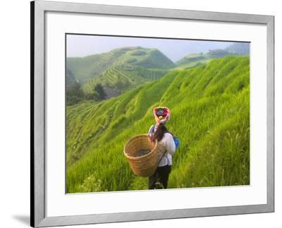 China, Guangxi Province, Longsheng, Zhuang Woman with Rice Terraces in the Mountain-Keren Su-Framed Photographic Print