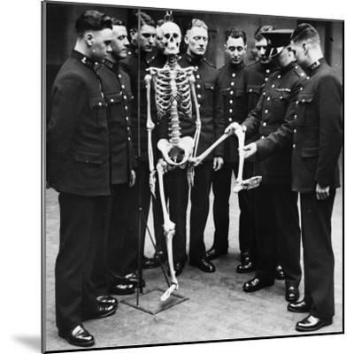 Skeleton Force--Mounted Photographic Print