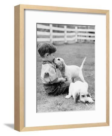 Little Boy Sitting in Grass With One Setter Puppy Licking Face and Another Lying in Grass-H^ Armstrong Roberts-Framed Photographic Print