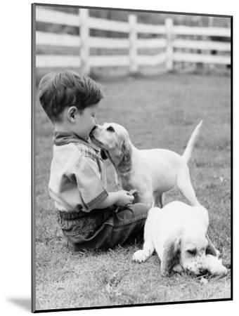 Little Boy Sitting in Grass With One Setter Puppy Licking Face and Another Lying in Grass-H^ Armstrong Roberts-Mounted Photographic Print