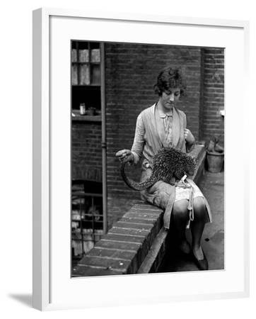 Woman and Anteater--Framed Photographic Print