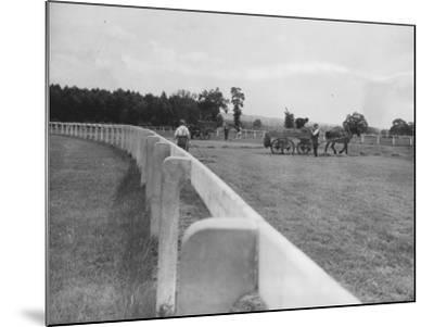 Newbury Race Course--Mounted Photographic Print