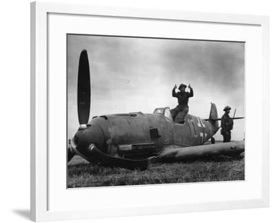 Guarding Plane--Framed Photographic Print
