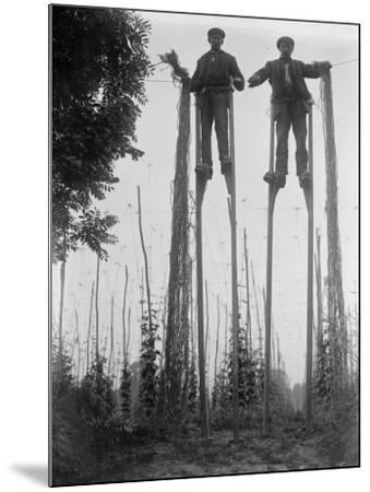 Stilt Walkers--Mounted Photographic Print