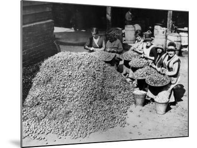 Peeling Onions--Mounted Photographic Print